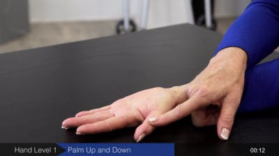 palm up and down exercise for hands