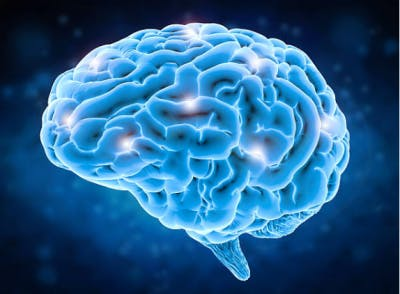Another fun traumatic brain injury fact is that the brain can rewire nerve cells through repetition
