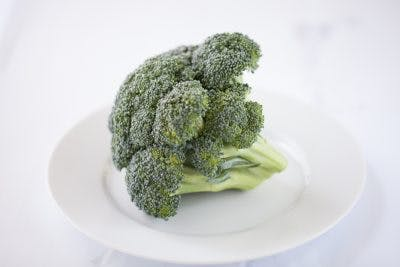 broccoli is full of vitamin k which helps promote cognition after concussion
