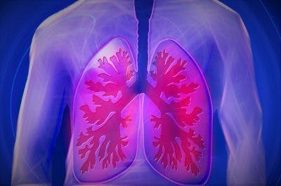 lungs inside chest showing TBI respiratory problems