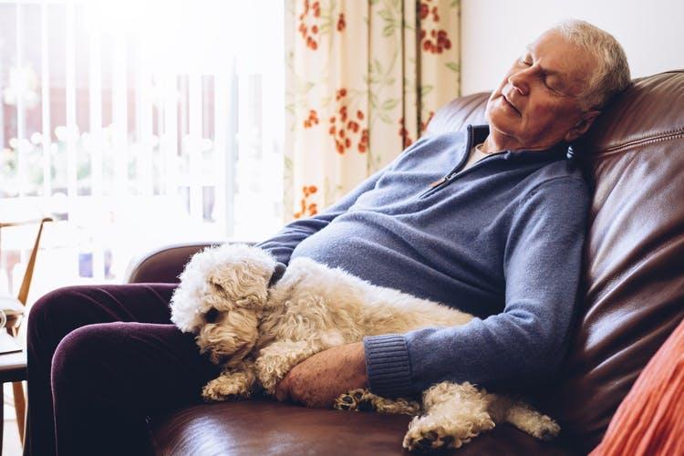 Hombre tomando una siesta con su perro en el sofá porque tiene somnolencia excesiva después del accidente cerebrovascular