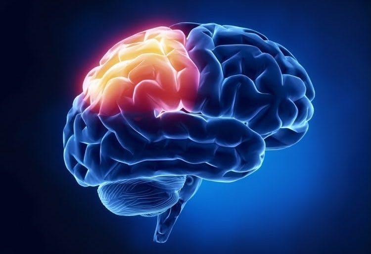 understanding parietal lobe damage