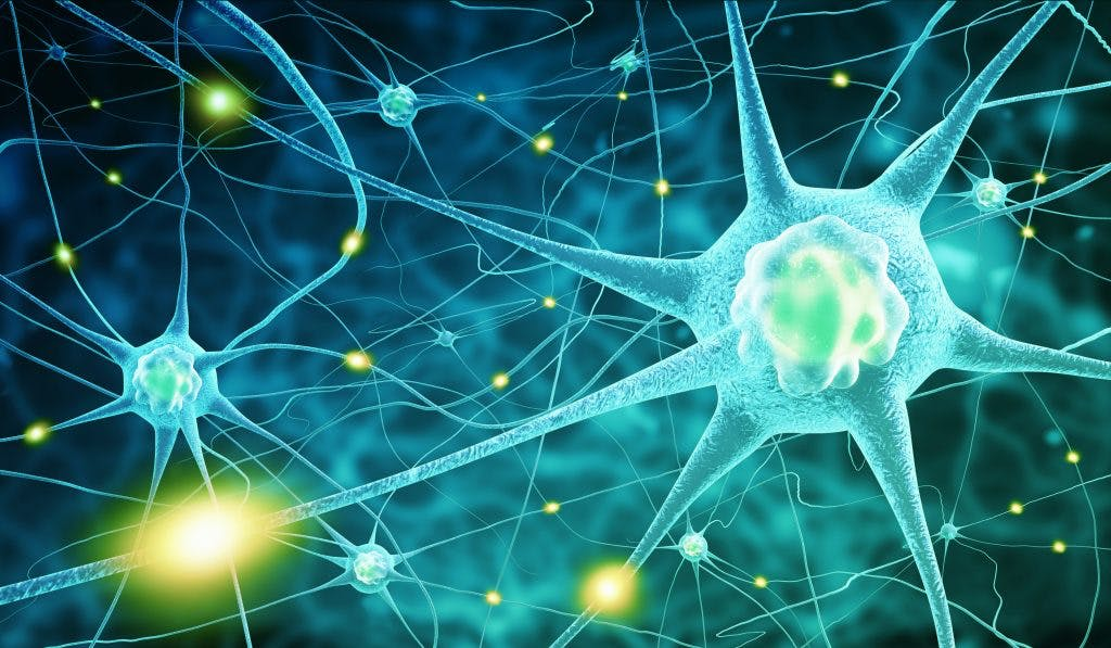 Diffuse axonal injury recovery will need to focus on repairing torn nerve cells