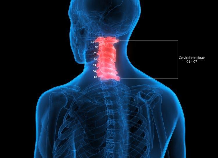 c1 spinal cord injury