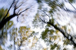 trees swirling because of dizziness after head injury