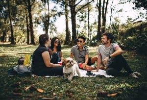 friends sitting on park grass talking