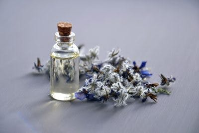 Bottle of essential oils near lavender flowers. Aromatherapy can sometimes treat loss of taste and smell after head injury