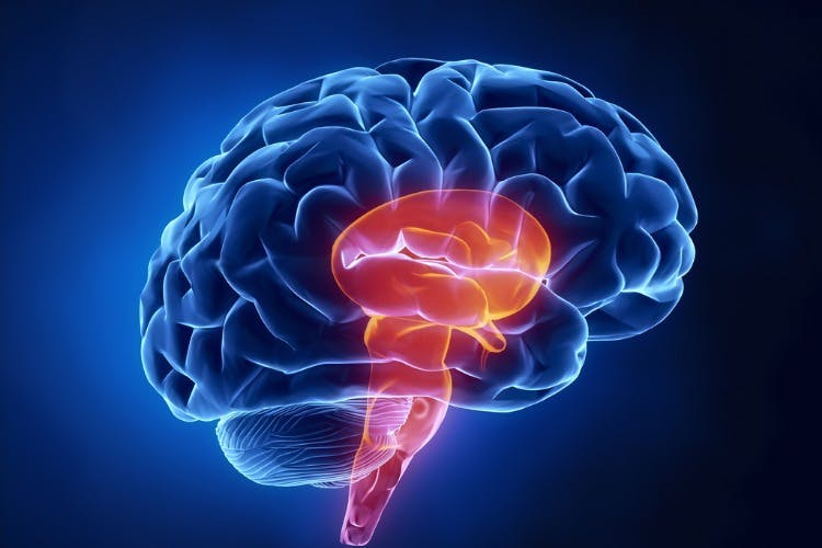 management and treatment for brain stem damage