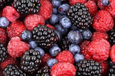 berries as a rich source of nutrients to remedy concussion syndrome