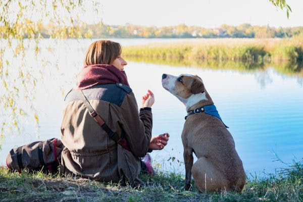 TBI service dog and owner sitting by lake
