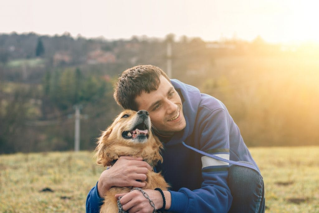 dog and owner hugging on grass field