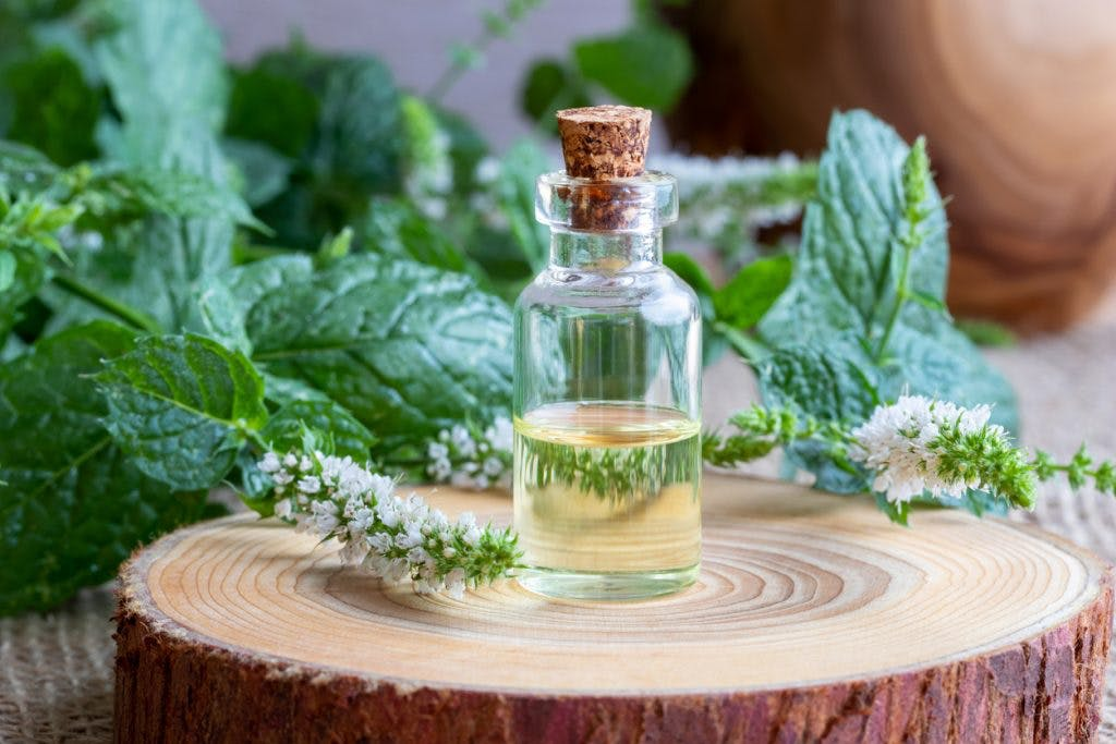 bottle of peppermint essential oil with fresh peppermint twigs