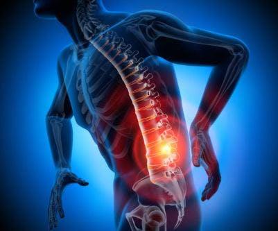 lumbar sci functions