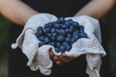 man holding pile of blueberries in a white cloth