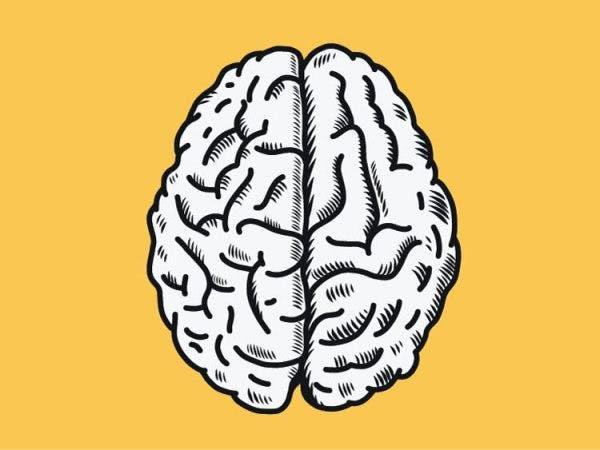 diagram of the two brain hemispheres to illustrate right hemisphere brain damage