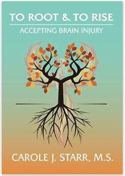 illustration of roots to rise stroke recovery book