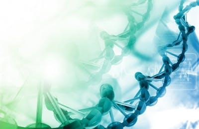 Stammzelltherapie zur Behandlung von Schlaganfällen