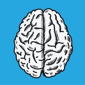 illustration of brain to highlight left hemisphere brain damage