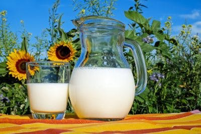dairy products like milk and yogurt are great sources of calcium