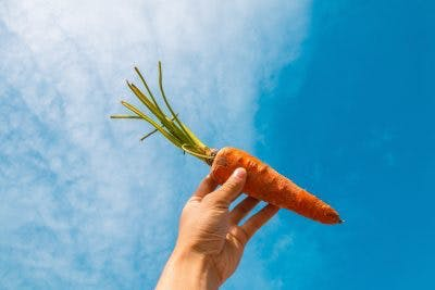 carrots are great sources of beta carotene which makes them one of the best food for spinal cord injury patients