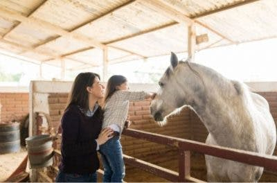 young girl with cerebral palsy at hippotherapy session