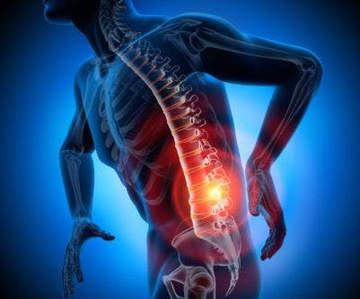 location of lumbar level spinal cord injury